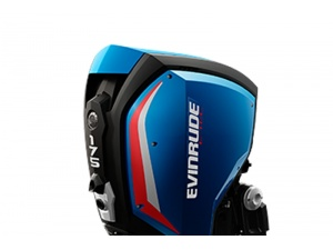 Evinrude E175