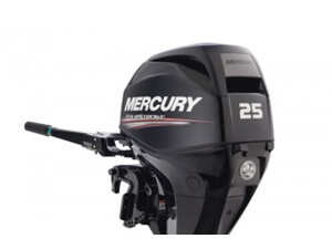 Mercury F 25