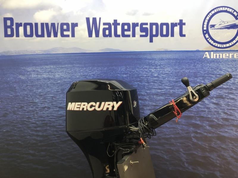 Mercury 50 pk big tiller