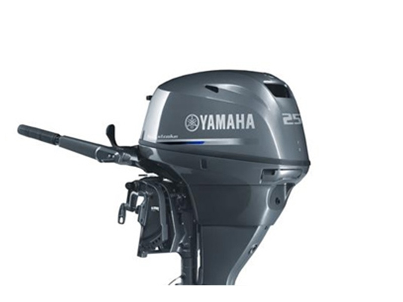 Yamaha FT25 High-Thrust